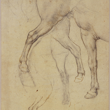 Recto: a study of the off-hind leg and quarters of a horse; studies of the legs of horses. Verso: a study of a horse moving to the right, the off-fore leg raised, the quarters slightly indicated. Probably for an undocumented French monument.