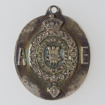 1 medal : silver Obverse: Prince of Wales' plumes within Garter and the chain of the order of the Star of India, dividing A - E Reverse: H. R. H. / ALBERT EDWARD / PRINCE / OF WALES / INDIA / 1875-6