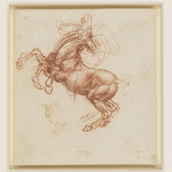 A study of a rearing horse with its head thrown back in at least three alternative positions, and the legs drawn repeatedly to give a sense of thrashing movement. A jumble of lines indicate a rider, perhaps raising his right arm to strike a blow. Bel