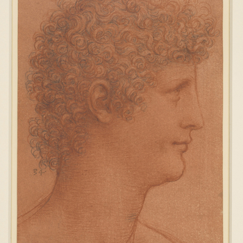 A drawing of the head of a young man turned in profile to the right. He has heavy classical features, and masses of curly hair. Melzi's number 34. Early in his career Leonardo fixed on two standard male types, who recur repeatedly in his drawings and pain