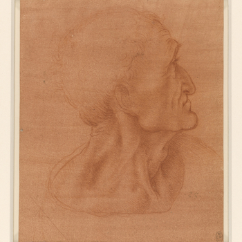 A study of the head and neck of a man, with the head slightly averted from the spectator, in profile to the right. He has a hooked nose, close-set lips and a strongly-modelled muscular neck. Melzi's number <em>33</em>.<br> <br>This is one of several autog