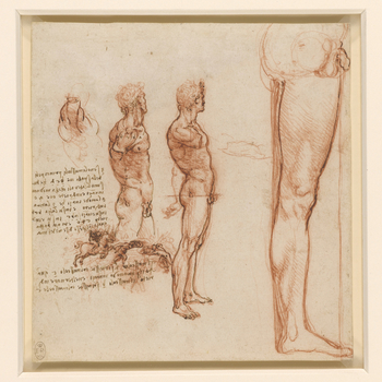 Two studies of a nude man, standing in profile to the right, with his right arm cut off to show the muscles of the side; a scene of a horseman charging at a fleeing man with a shield; a note on the action of the shoulder muscles, and above, a slight sketc