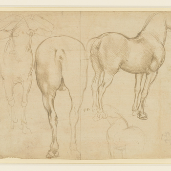 A full-length drawing of a standing horse, facing the viewer; a study of the hind-quarters of a horse, with its back to the spectator; a full-length horse, in profile to the right, turned slightly away from the spectator; a slight sketch of a horse, and a