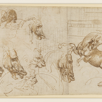 <p>The recto of the sheet is mainly concerned with a comparative study of the expressions of fury in horses, a lion and a man, done as 'background research' towards Leonardo's mural of the Battle of Anghiari.<br /><br />In early 1503 Leonardo agreed to pa