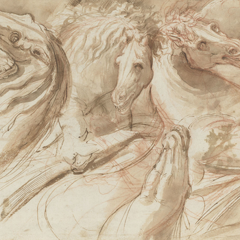 Recto: Six horses? heads. Verso: Mercury and Venus floating in a shell
