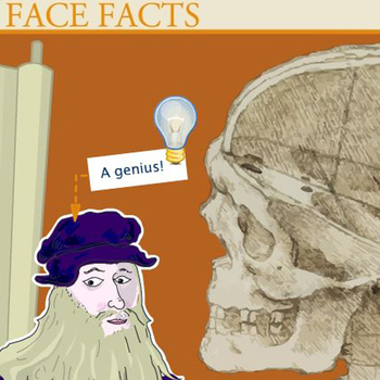 Face Facts: Children's activity banner
