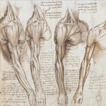 Leonardo da Vinci The Mechanics of Man thumbnail jacket image