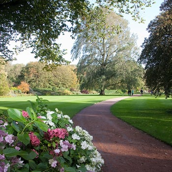 The garden, Palace of Holyroodhouse