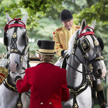 Image of horse and liveried staff