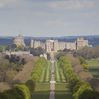 View of Windsor Castle from The Long Walk