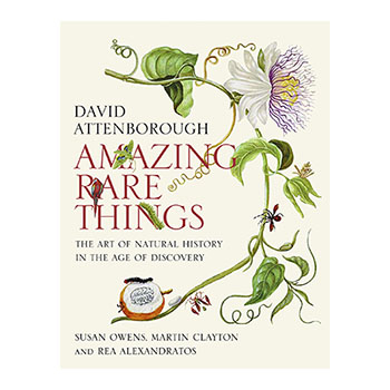 Cover for Amazing Rare Things