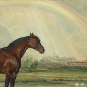 Painting of horse and rainbow above