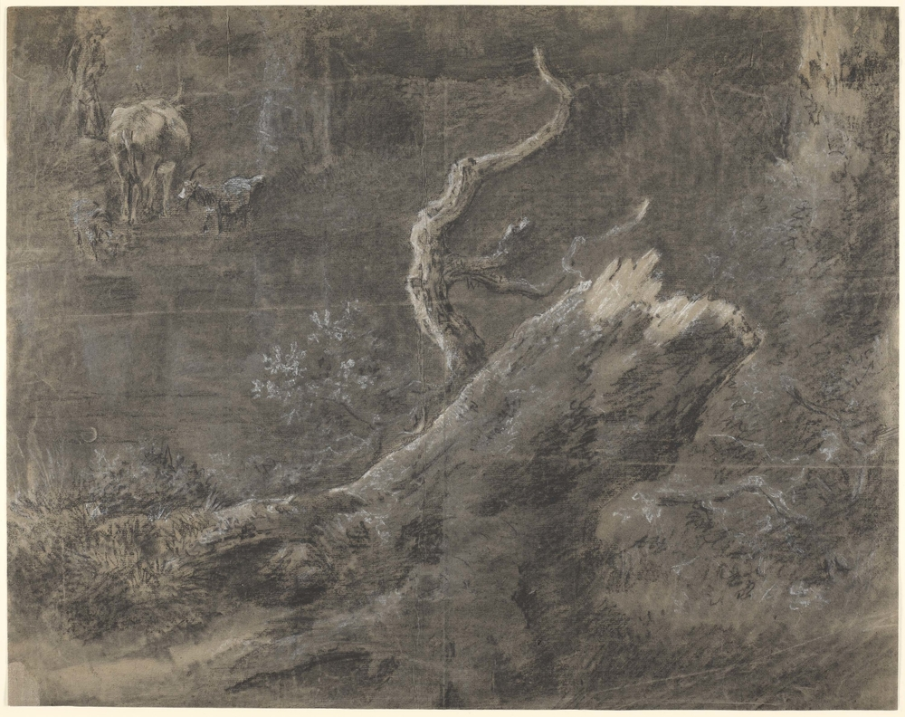 A drawing in black and white chalk and stump, showing a tree stump and possibly a watering hole.A shepherd with cow and two goats in the background left. Drying fold at centre of sheet. The sheet is highly unusual in being covered almost entirely w