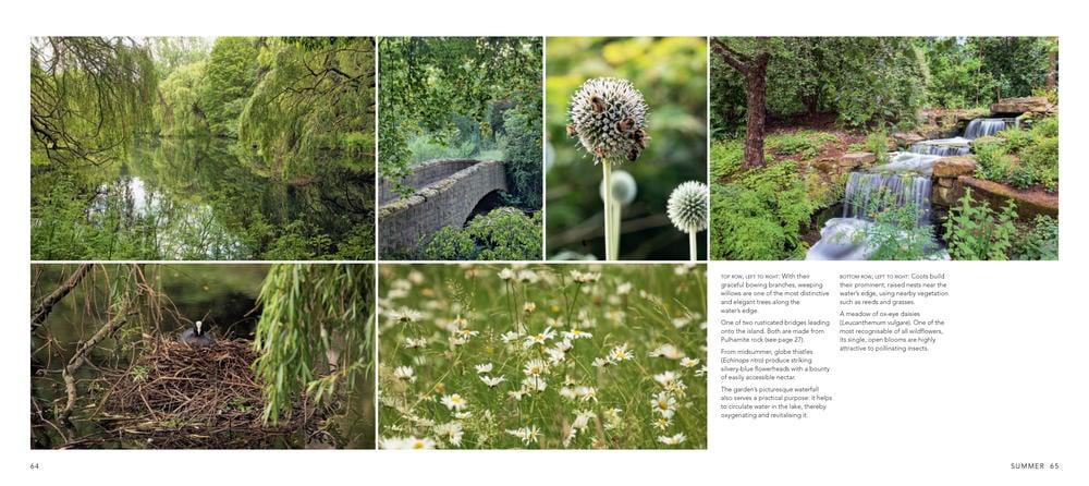 Scene from the Buckingham Palace garden book